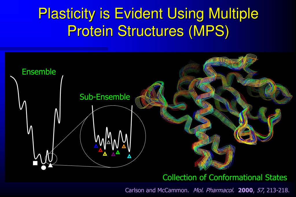 Plasticity is Evident Using Multiple Protein Structures (MPS)