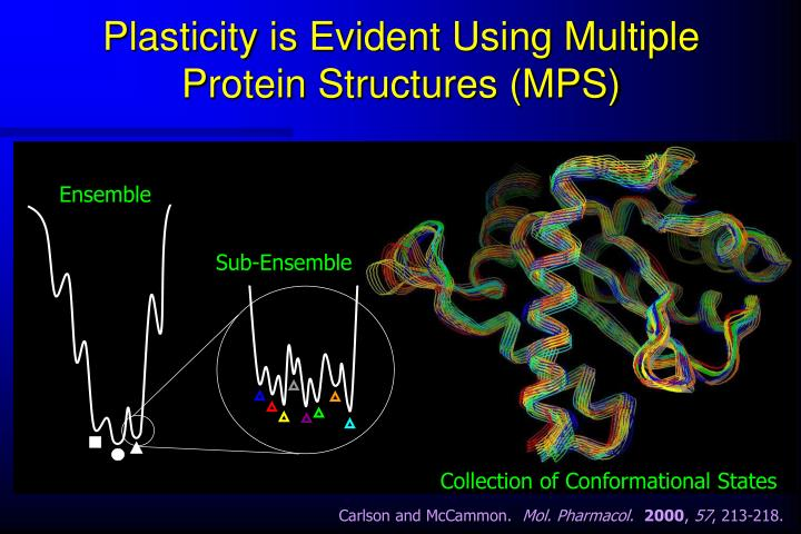Plasticity is evident using multiple protein structures mps
