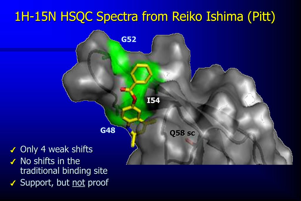 1H-15N HSQC Spectra from Reiko Ishima (Pitt)