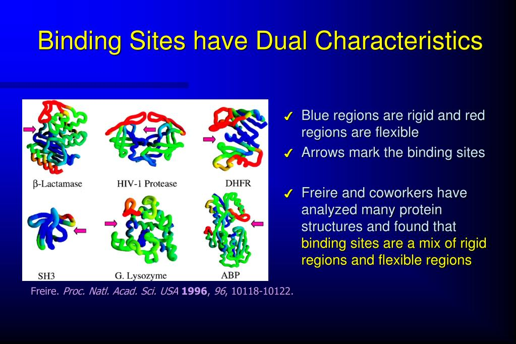 Binding Sites have Dual Characteristics