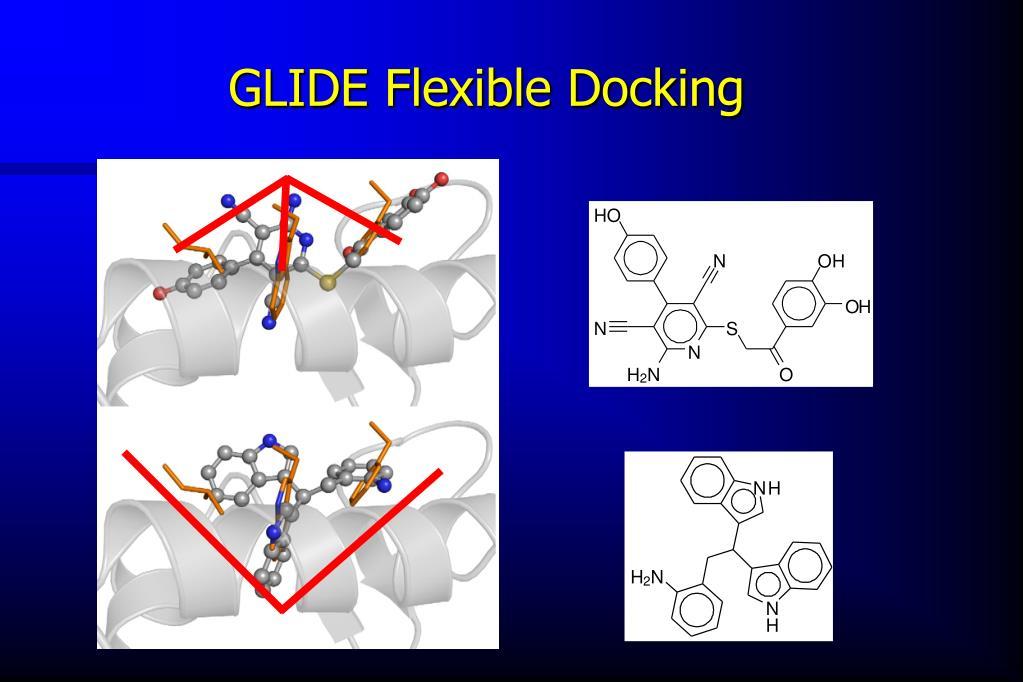 GLIDE Flexible Docking