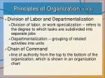 principles of organization 1 of 3