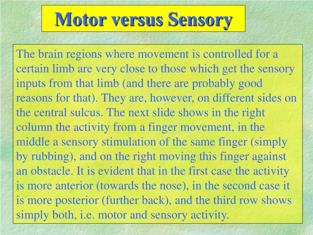 Motor versus Sensory