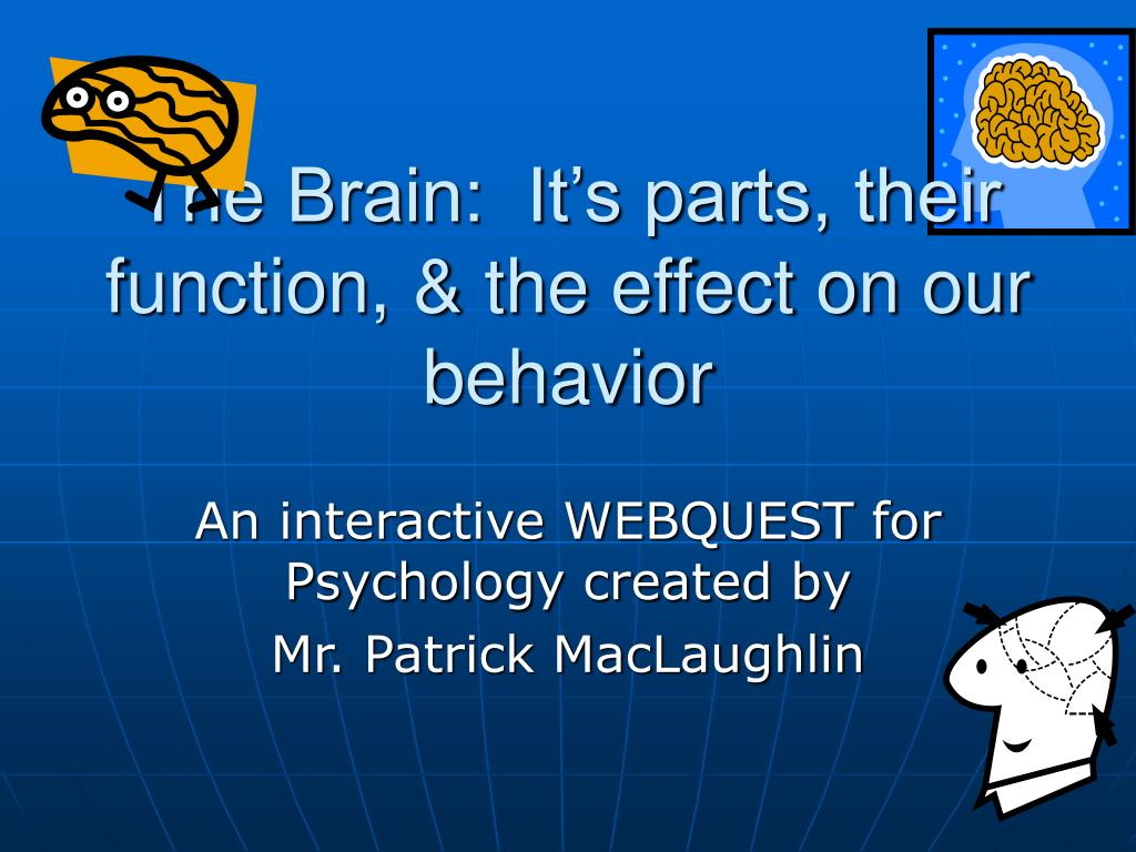 The Brain:  It's parts, their function, & the effect on our behavior