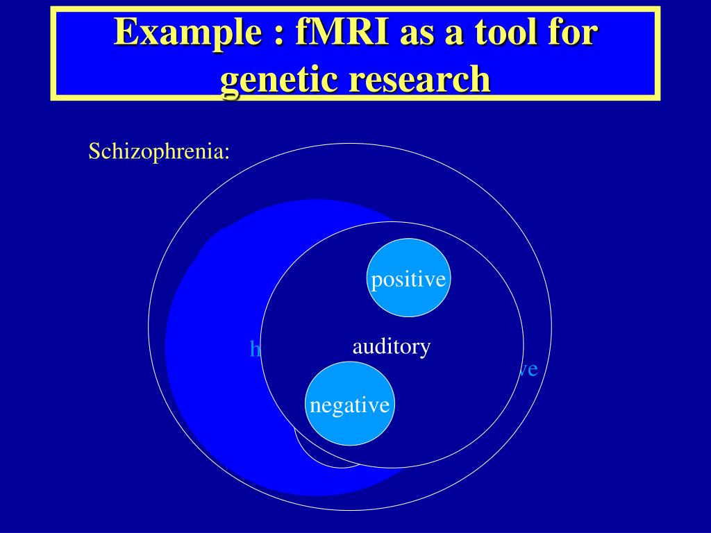 Example : fMRI as a tool for genetic research