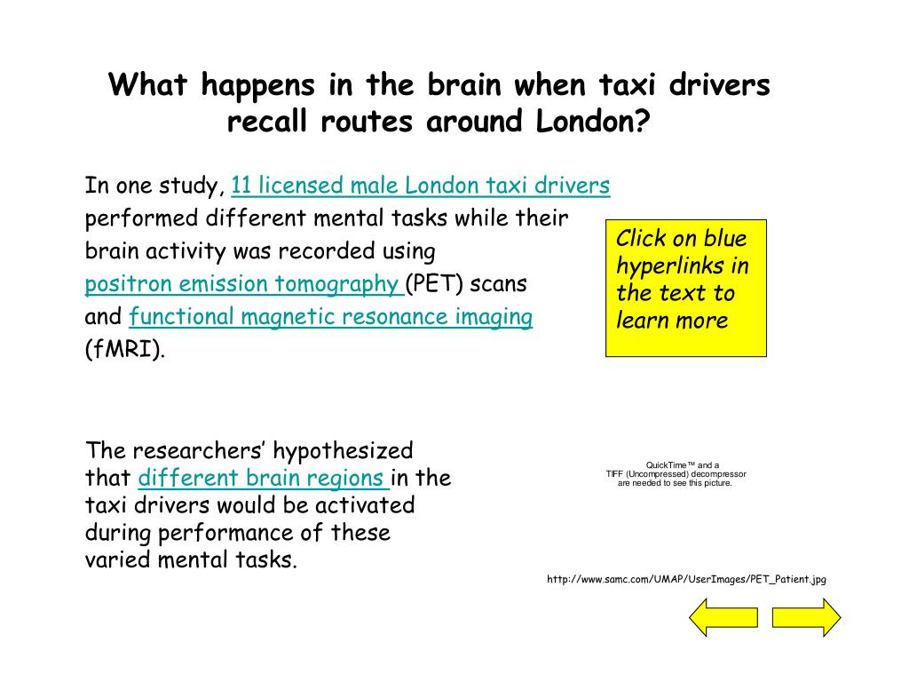 What happens in the brain when taxi drivers recall routes around London?