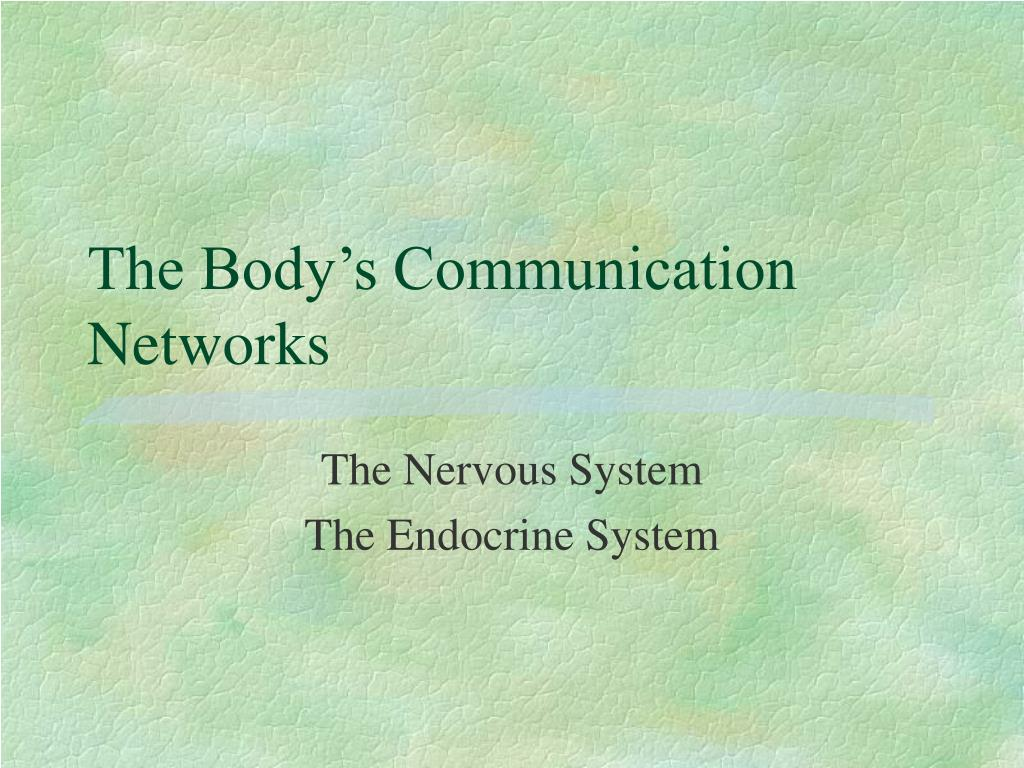 The Body's Communication Networks