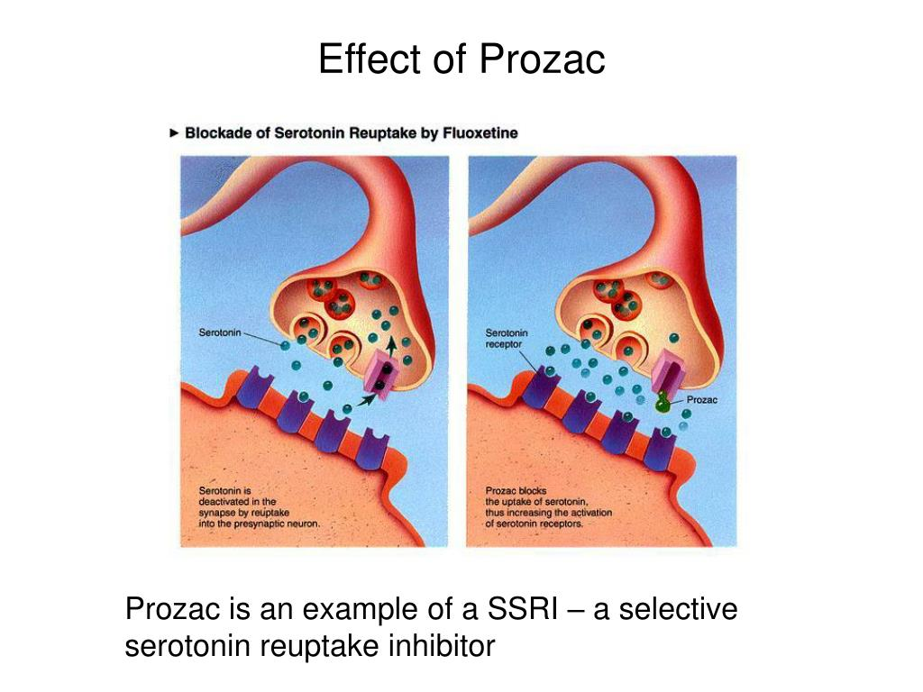 Effect of Prozac