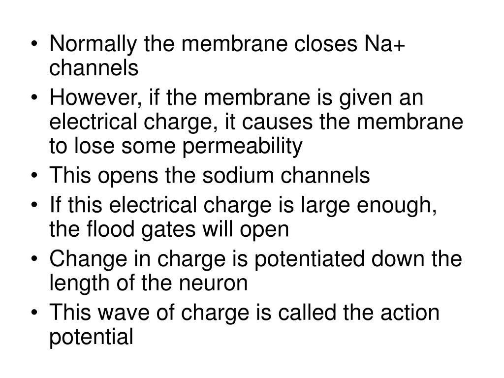 Normally the membrane closes Na+ channels