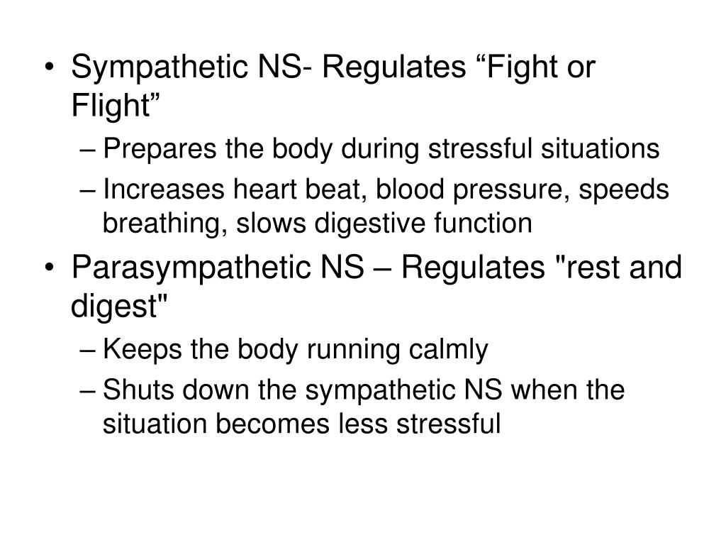 "Sympathetic NS- Regulates ""Fight or Flight"""