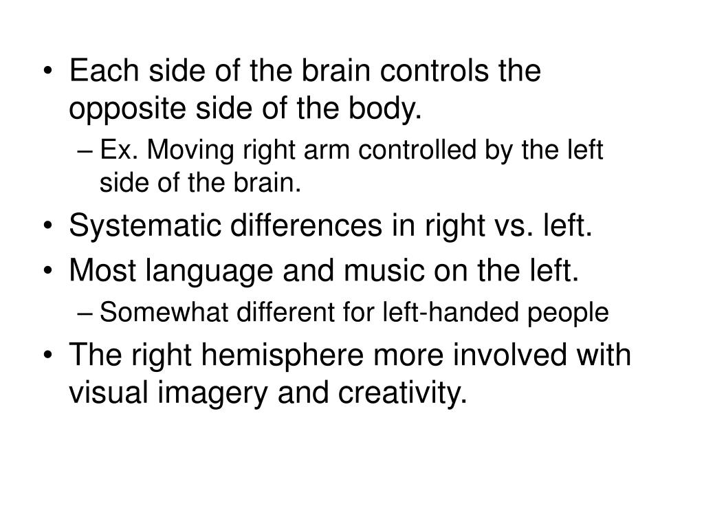 Each side of the brain controls the opposite side of the body.