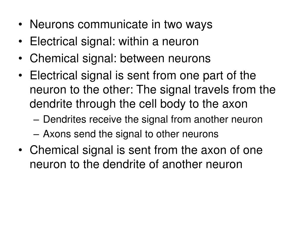 Neurons communicate in two ways