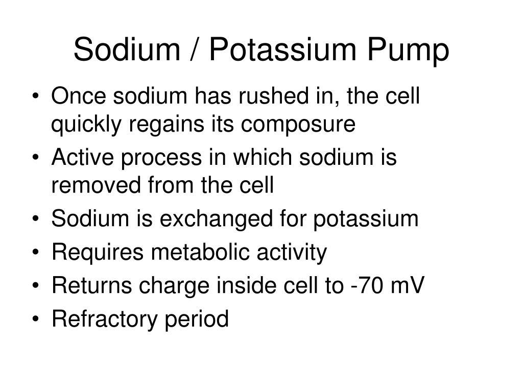 Sodium / Potassium Pump