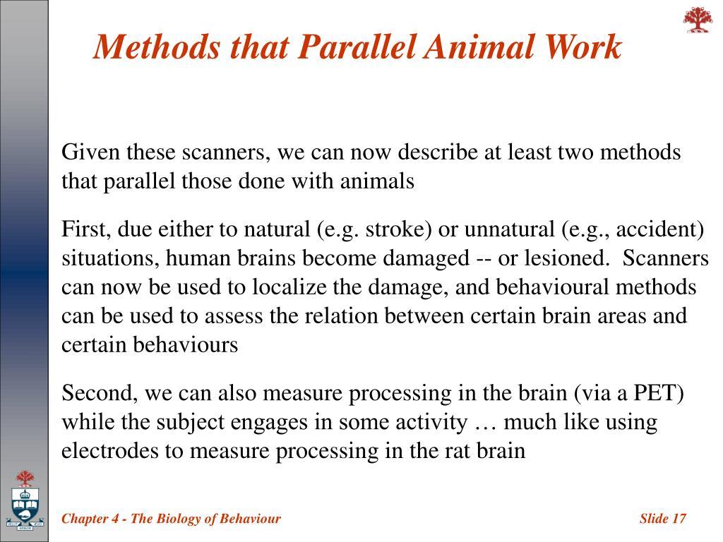 Methods that Parallel Animal Work