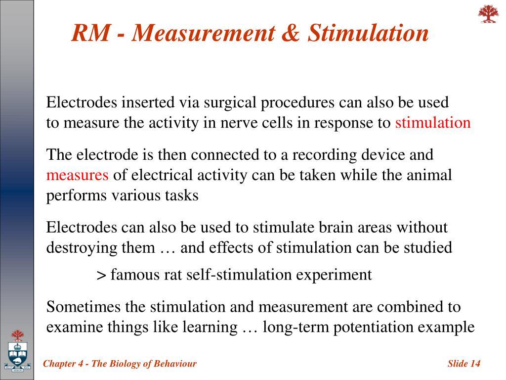 RM - Measurement & Stimulation