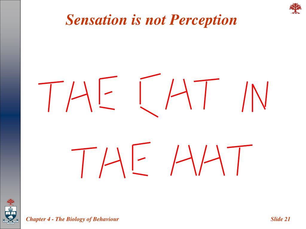 Sensation is not Perception