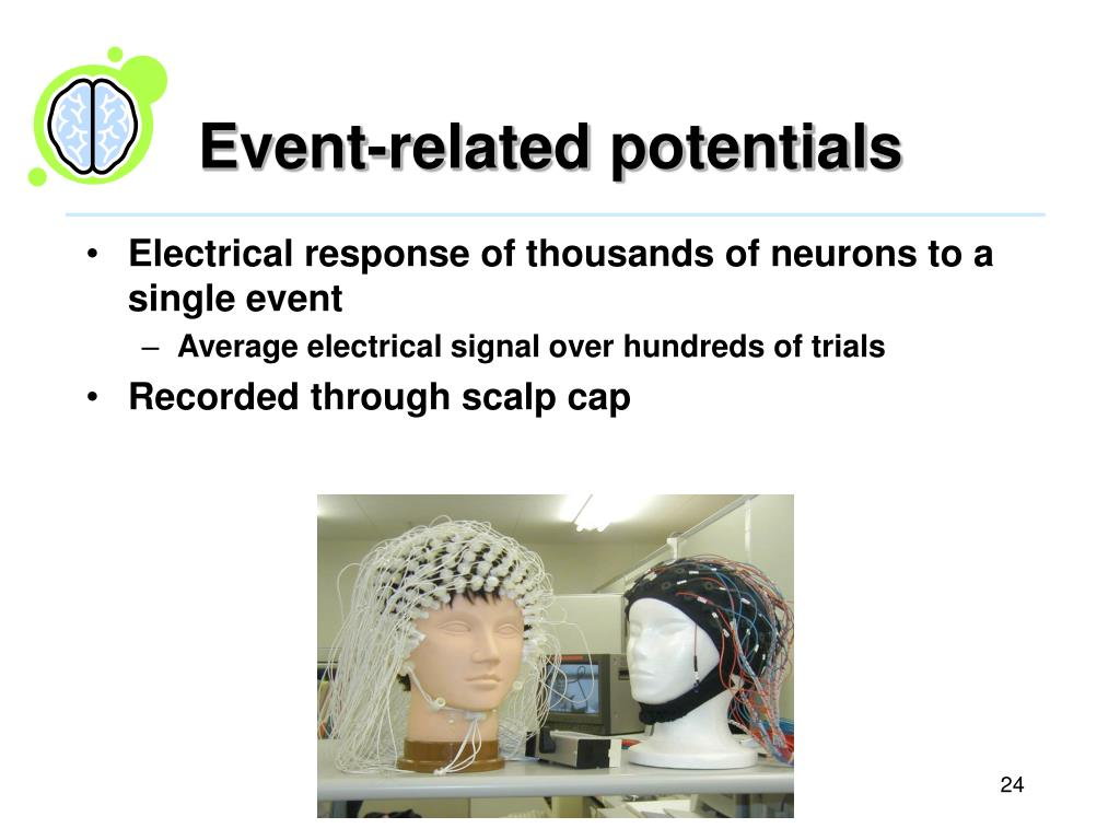 Event-related potentials