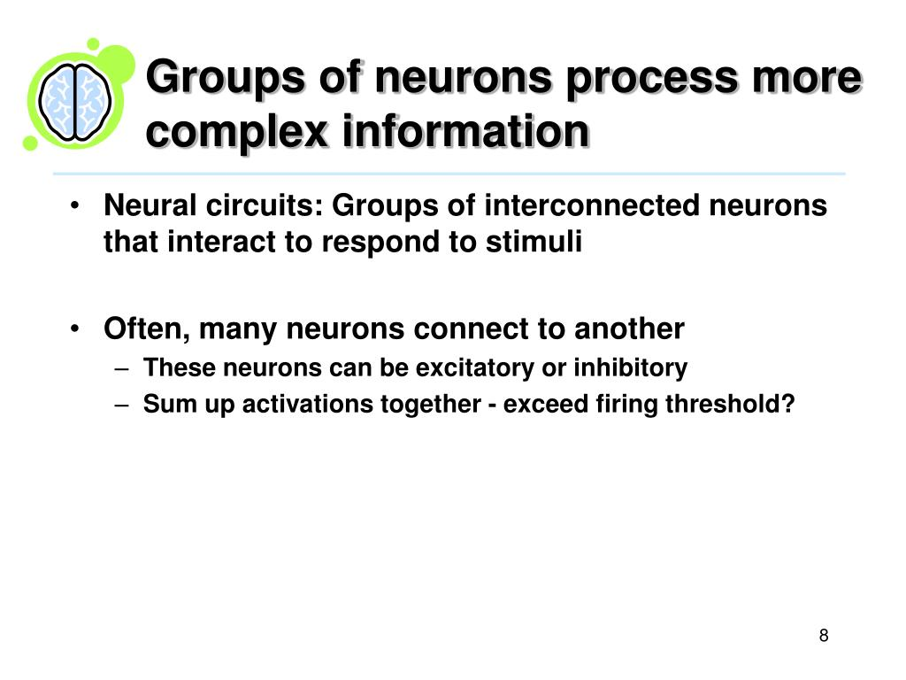 Groups of neurons process more complex information