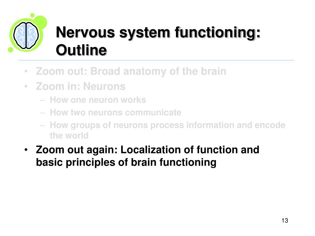 Nervous system functioning: Outline
