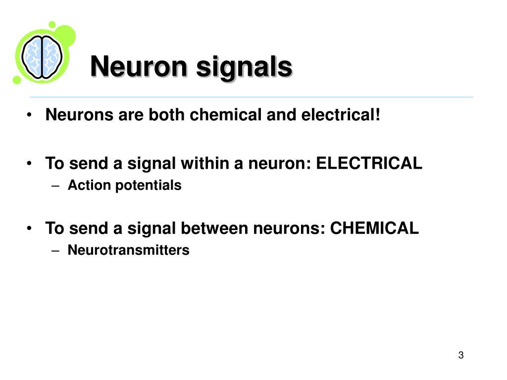 Neuron signals