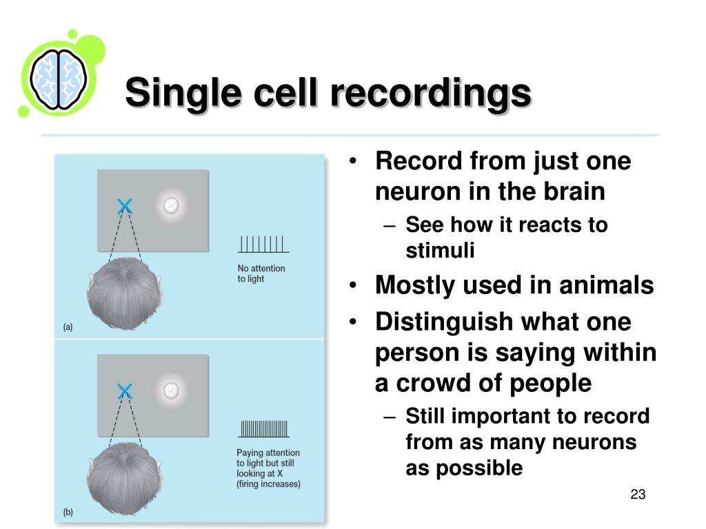 Single cell recordings