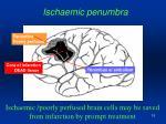 ischaemic penumbra