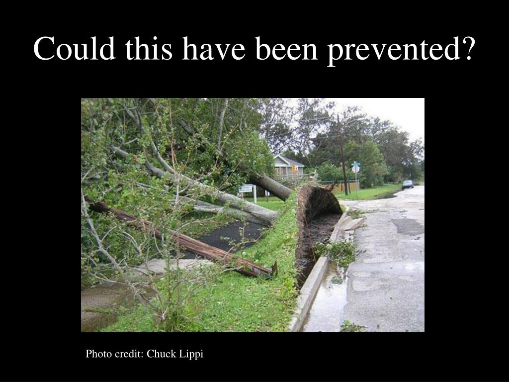 Could this have been prevented?