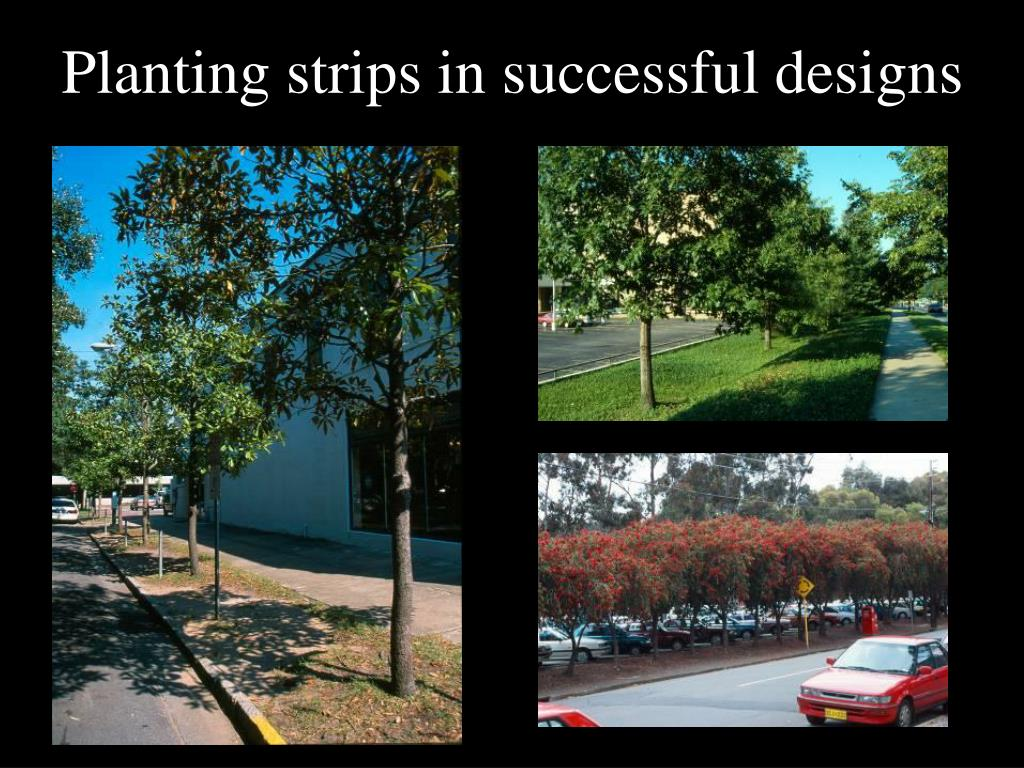 Planting strips in successful designs