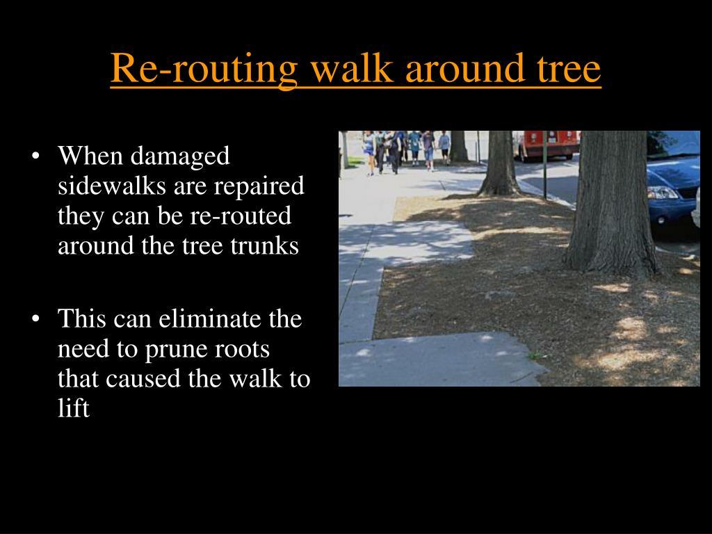 Re-routing walk around tree