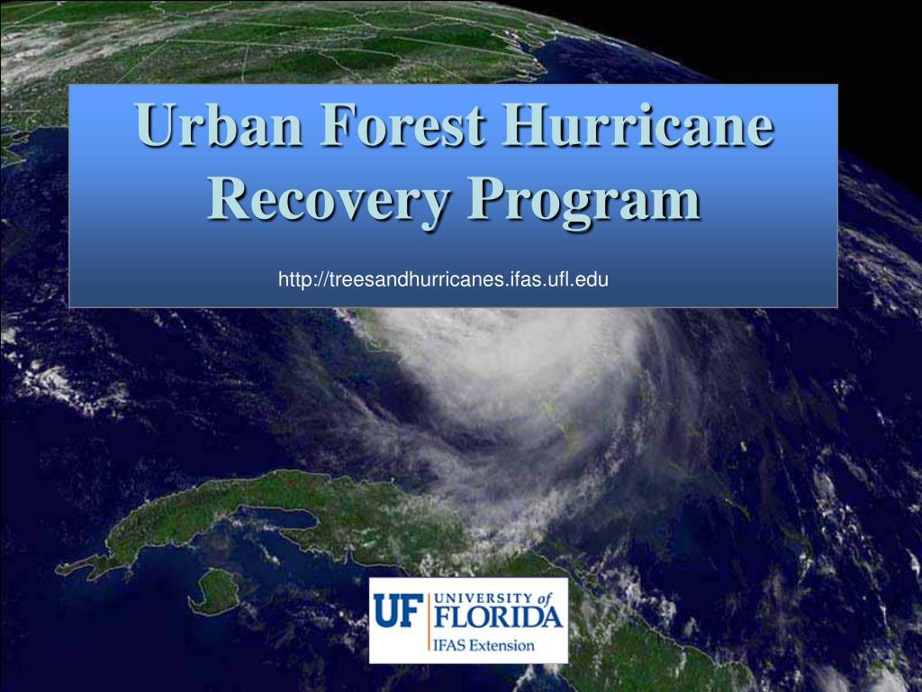 Urban Forest Hurricane Recovery Program