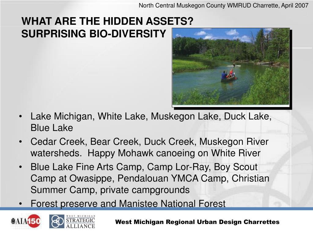 Lake Michigan, White Lake, Muskegon Lake, Duck Lake, Blue Lake