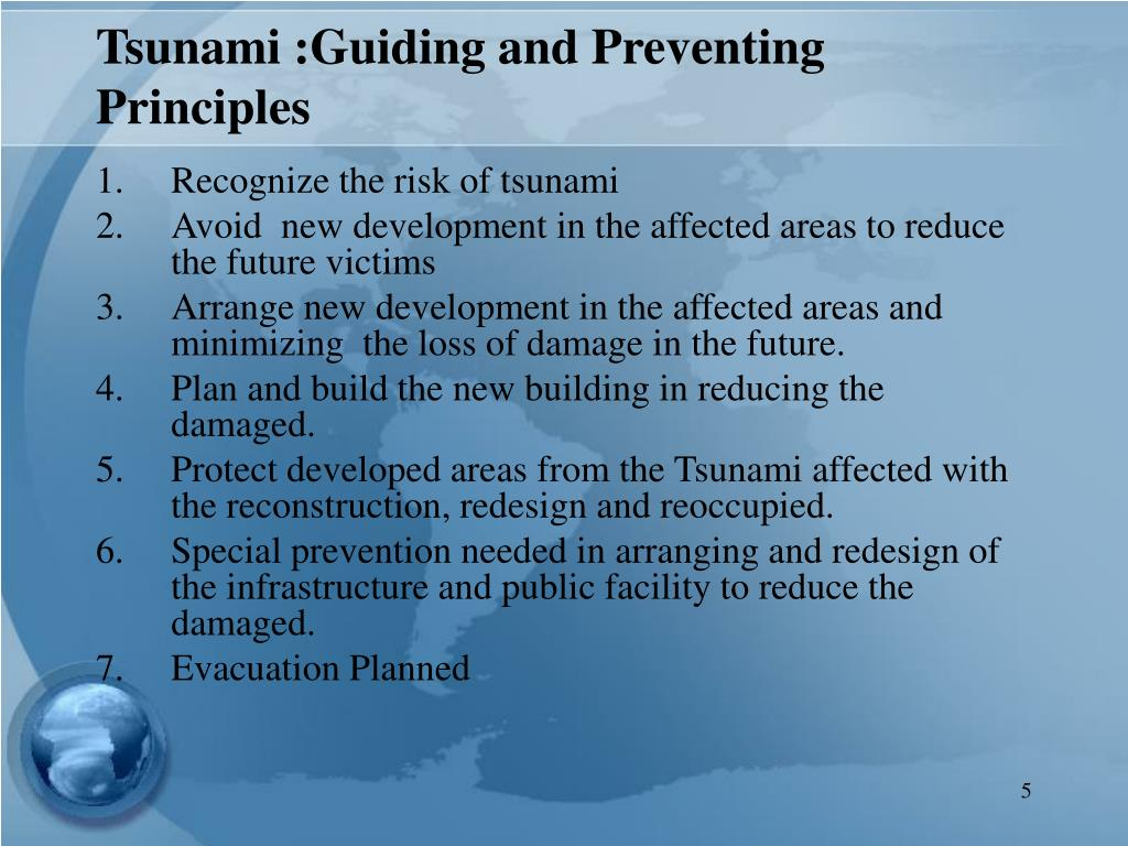 Tsunami :Guiding and Preventing Principles