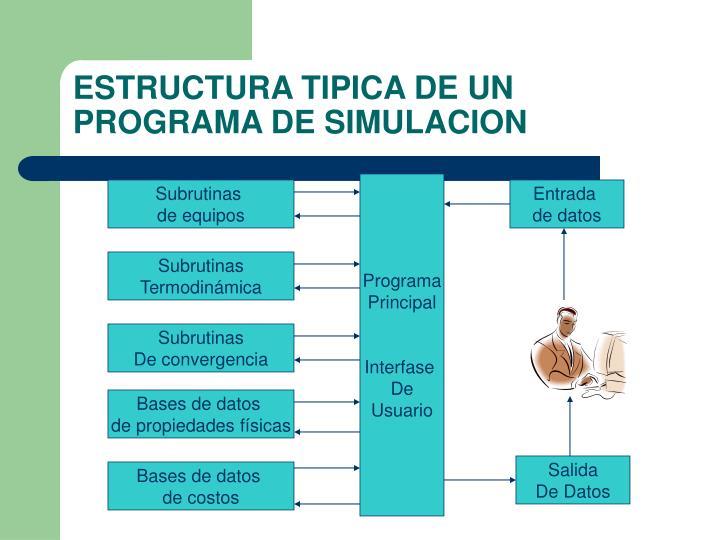 ESTRUCTURA TIPICA DE UN PROGRAMA DE SIMULACION