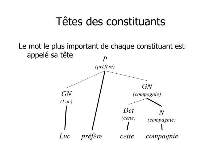 Têtes des constituants