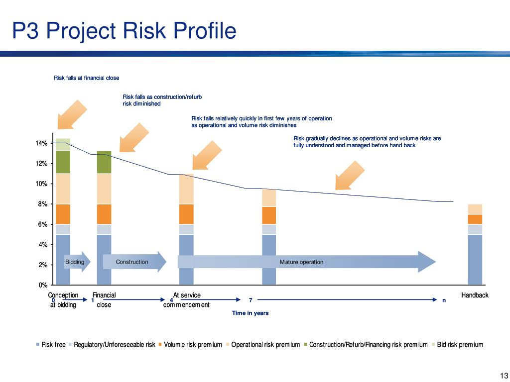 P3 Project Risk Profile