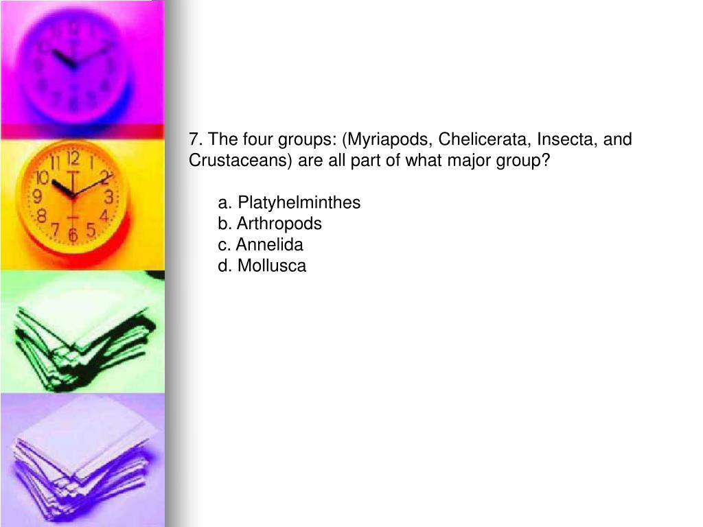 7. The four groups: (Myriapods, Chelicerata, Insecta, and