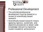 professional development30