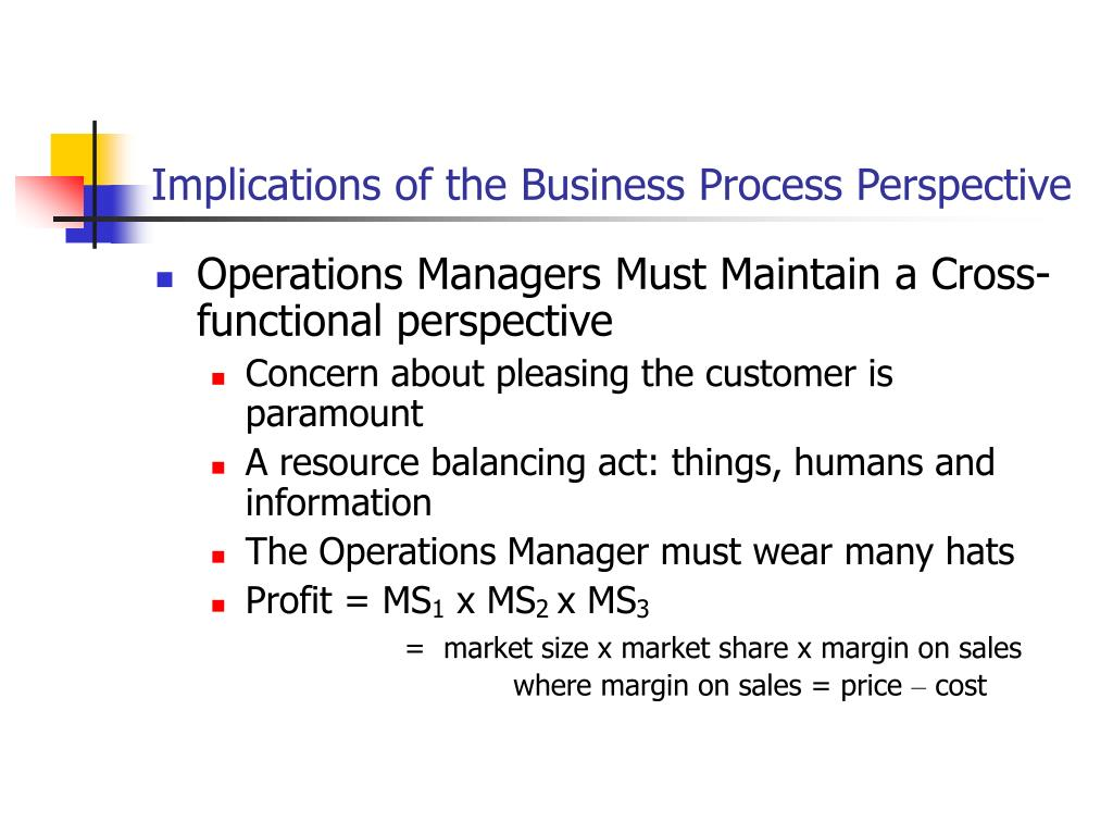 Implications of the Business Process Perspective