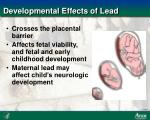 developmental effects of lead