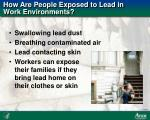 how are people exposed to lead in work environments