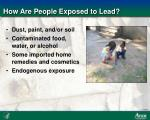 how are people exposed to lead