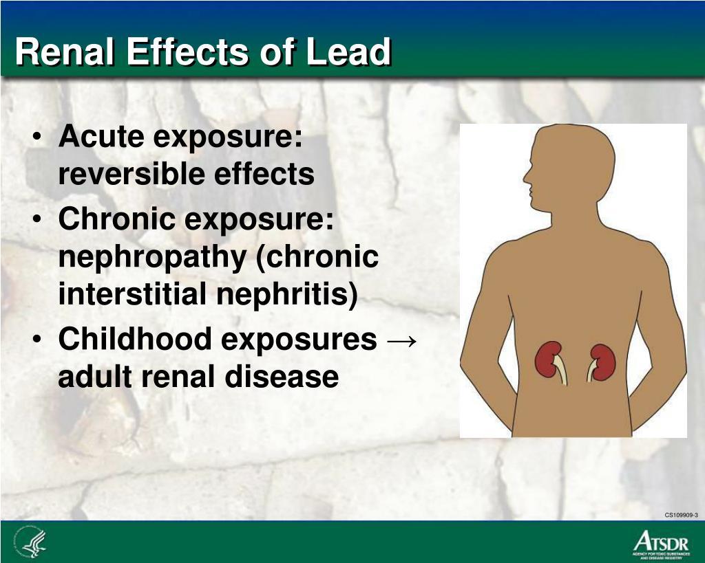Renal Effects of Lead