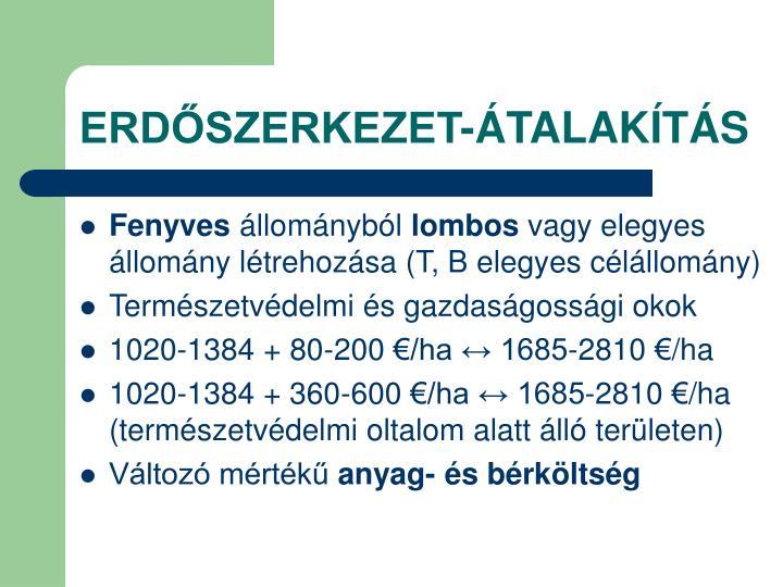 ERDŐSZERKEZET-ÁTALAKÍTÁS