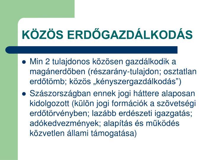 KÖZÖS ERDŐGAZDÁLKODÁS