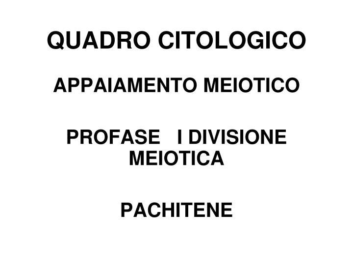 QUADRO CITOLOGICO