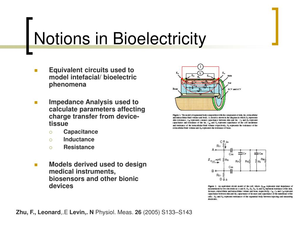 Notions in Bioelectricity