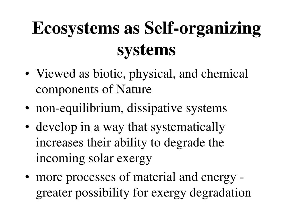 Ecosystems as Self-organizing systems
