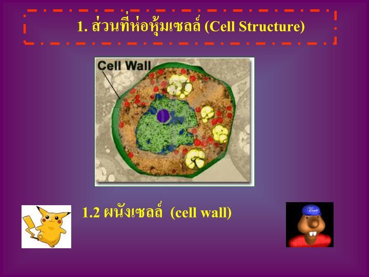 1. ส่วนที่ห่อหุ้มเซลล์