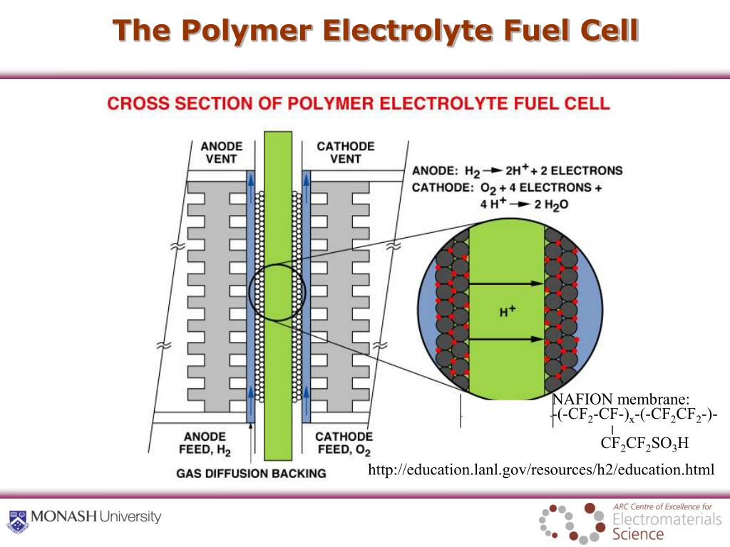 The Polymer Electrolyte Fuel Cell