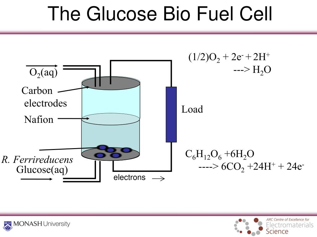 The Glucose Bio Fuel Cell